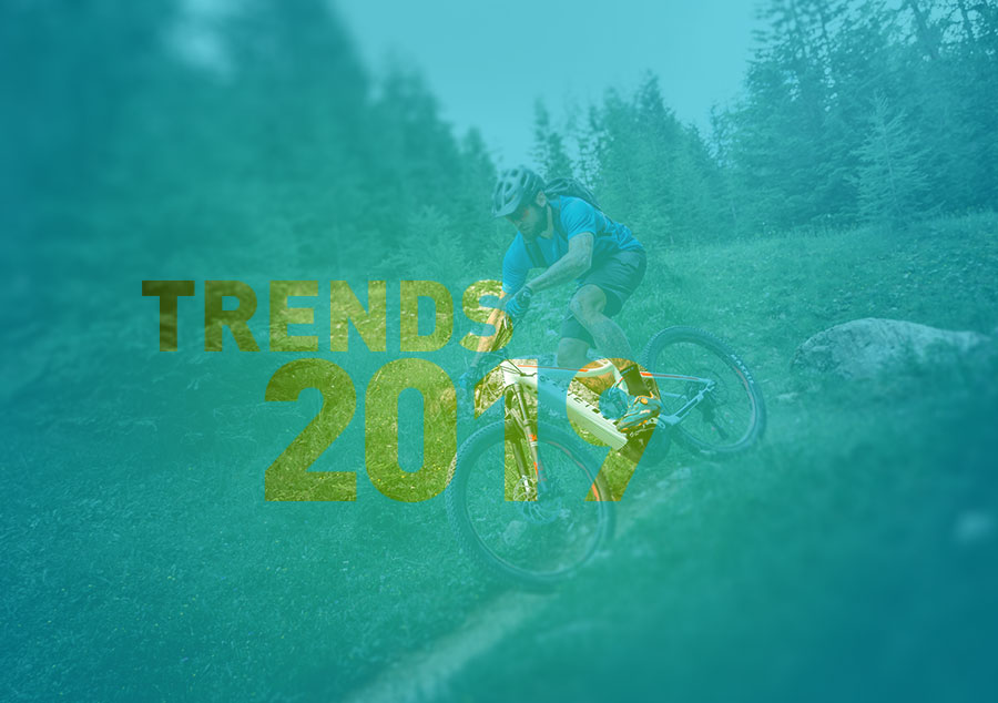 E-Bikes, Trends 2019, Ausblick